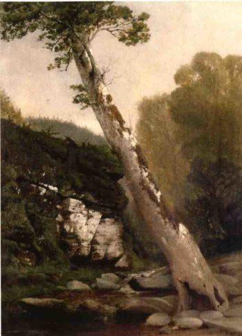 Sycamore Catskill Clove Below Haines Falls | John Williamson | oil painting