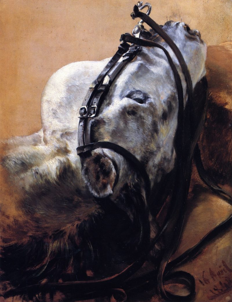 Head of Horse Wearing Bridle Lying Down   Adolph von Menzel   oil painting