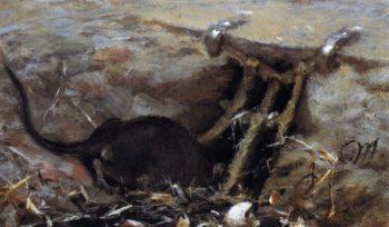 Rat in the Gutter | Adolph von Menzel | oil painting