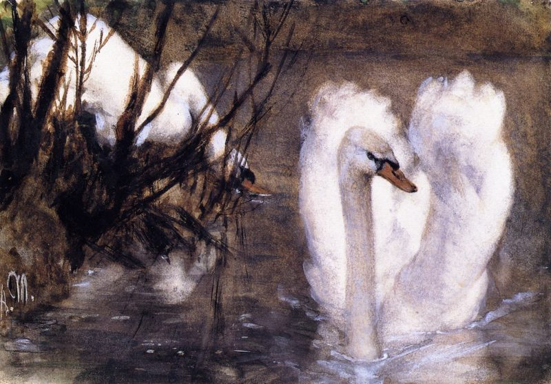 Two Swans | Adolph von Menzel | oil painting