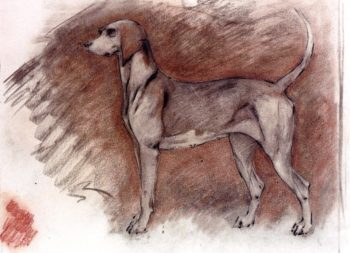 Hound at Attention | Robert Bevan | oil painting