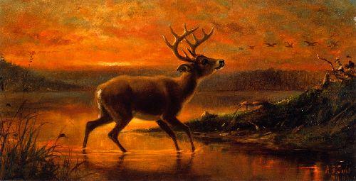 Ten Point Buck in Evening Twilight   Arthur Fitzwilliam Tait   oil painting