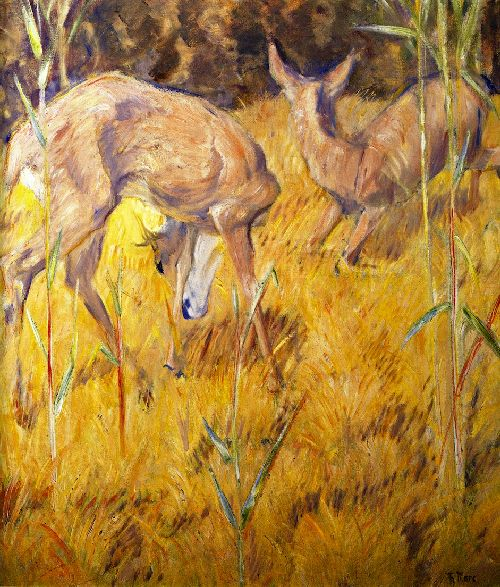 Deer in the Reeds | Franz Marc | oil painting
