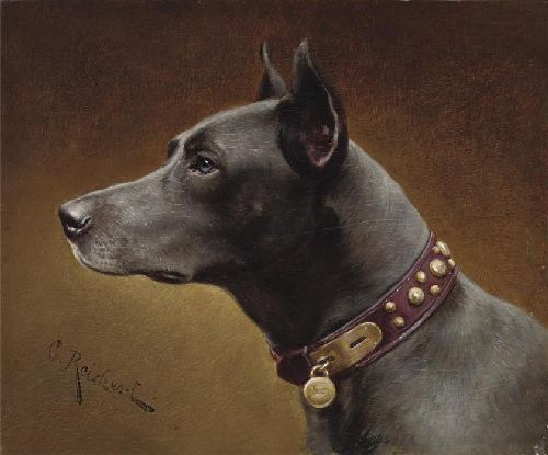 Black Doberman   Carl Reichert   oil painting