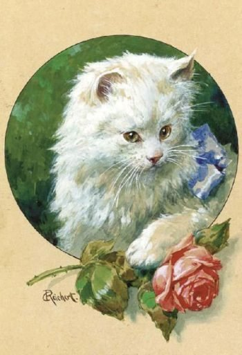 Cat and Rose | Carl Reichert | oil painting