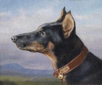 Portrait of a Doberman   Carl Reichert   oil painting