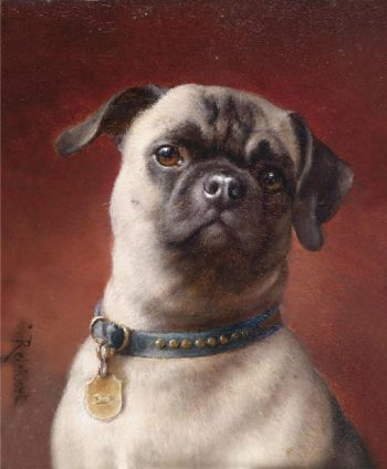 Pug   Carl Reichert   oil painting