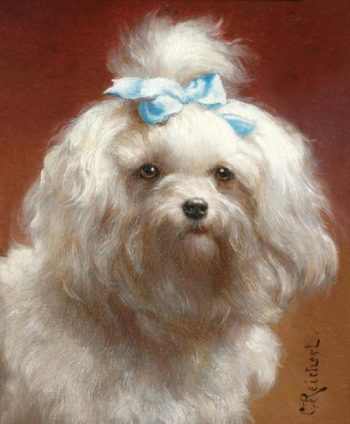 The blue bow   Carl Reichert   oil painting