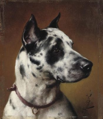 The great Dane   Carl Reichert   oil painting