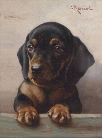 Young dachshund   Carl Reichert   oil painting