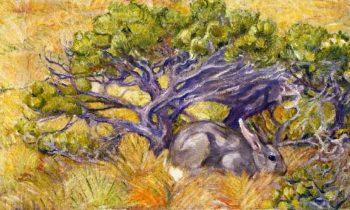 Wild Rabbit | Franz Marc | oil painting