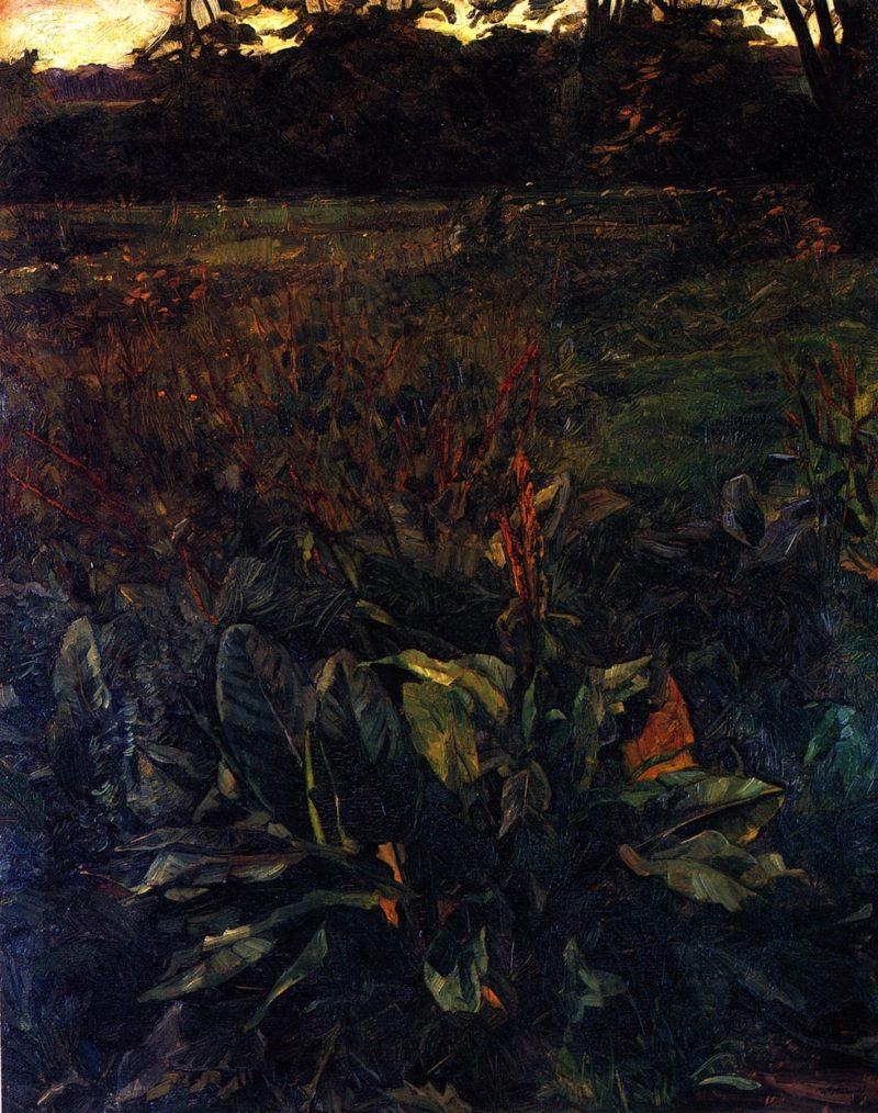 Plant Study in Park Hemsbach | Wilhelm Trubner | oil painting