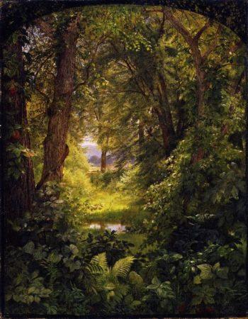 Woodland Landscape | William Trost Richards | oil painting
