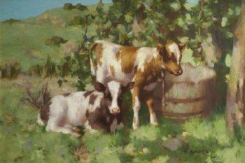 Calves | David Gauld | oil painting