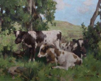 Calves in Summer | David Gauld | oil painting