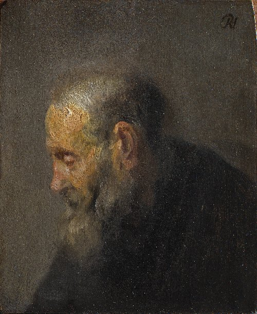 Study of an Old Man in Profile | Rembrandt | oil painting
