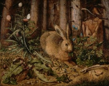 A Hare in the Forest | Hans Hoffmann | oil painting