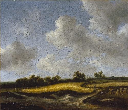 Landscape with a Wheatfield   Jacob van Ruisdael   oil painting