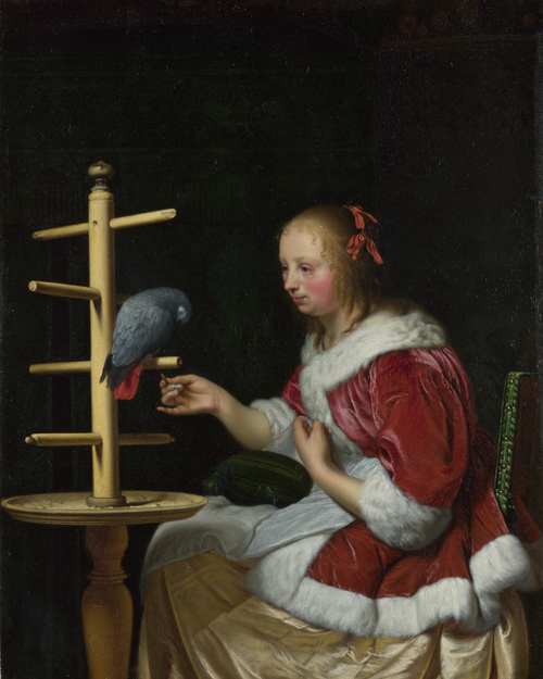 A Woman in a Red Jacket feeding a Parrot | Frans van Mieris the Elder | oil painting