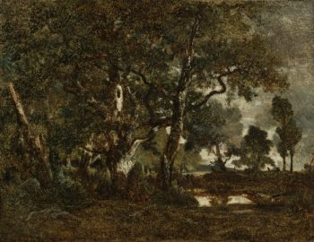 Forest of Fontainebleau Cluster of Tall Trees Overlooking the Plain of Clair Bois at the Edge of Bas Breau | Theodore Rousseau | oil painting