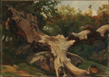 Uprooted Tree Olevano (1833) | Antoine-Xavier-Gabriel de Gazeau | oil painting