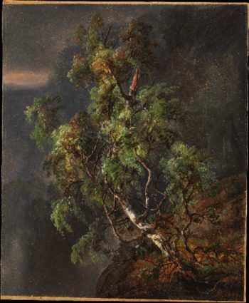 Birch Tree in a Storm (1849) | Johan Christian Dahl | oil painting