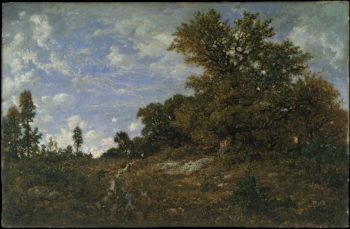 The Edge of the Woods at Monts-Girard Fontainebleau Forest (1852-54) | Theodore Rousseau | oil painting