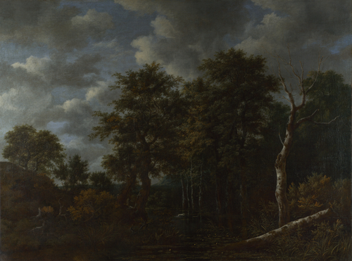 A Pool surrounded by Trees | Jacob van Ruisdael | oil painting