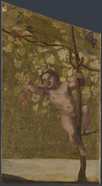 Putto gathering Grapes | Annibale Carracci | oil painting