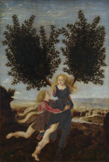 Apollo and Daphne   Antonio del Pollaiuolo   oil painting