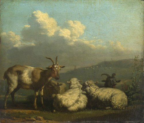 Sheep and Goats | Karel Dujardin | oil painting