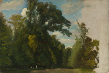 Trees in the Park at Saint-Cloud | Paul Huet | oil painting