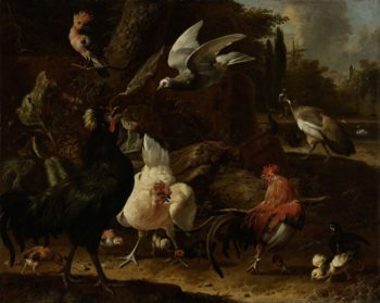 Birds in a park. 1686 | Melchior d' Hondecoeter | oil painting