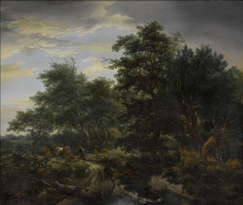 Bosgezicht. 1653 | Jacob Isaacksz. van Ruisdael | oil painting