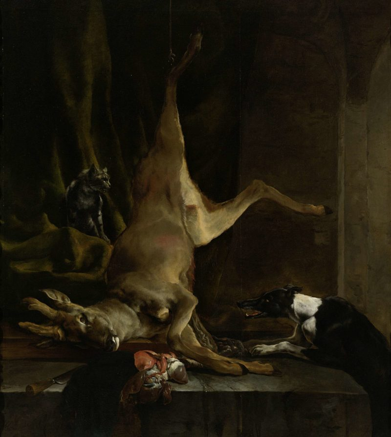 A dog and a cat in a half slaughtered deer. 1645 - 1660   Jan Baptist Weenix   oil painting