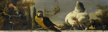 Birds on a railing. ca. 1680 - ca. 1690   Melchior d' Hondecoeter   oil painting