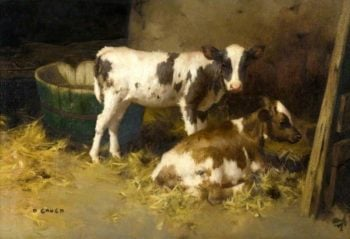 Two Calves   David Gauld   oil painting