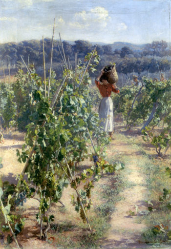 Grape harvesting | Elin Kleopatra Danielson Gambogi | oil painting