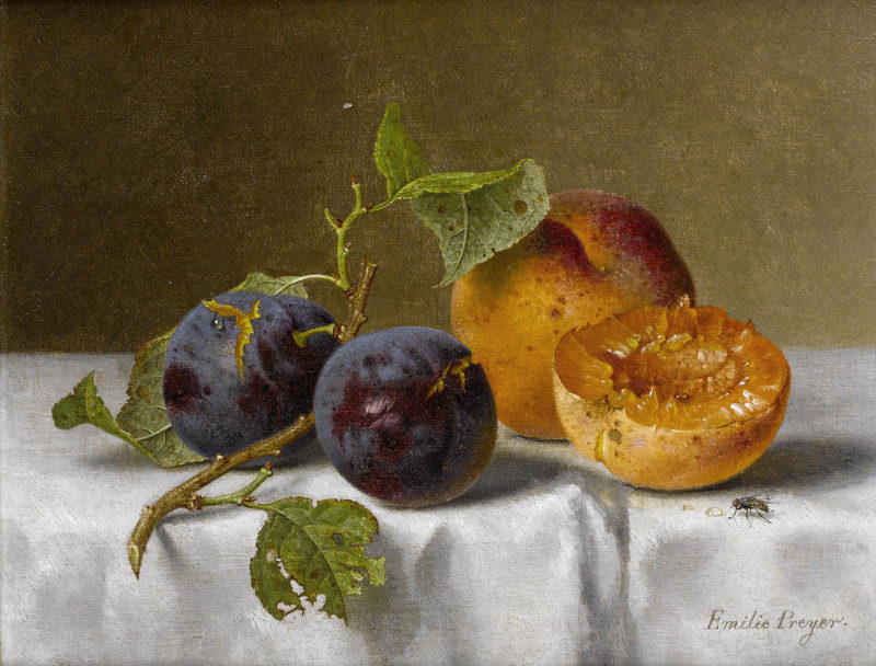 Plums and Apricot   Emilie Preyer   oil painting