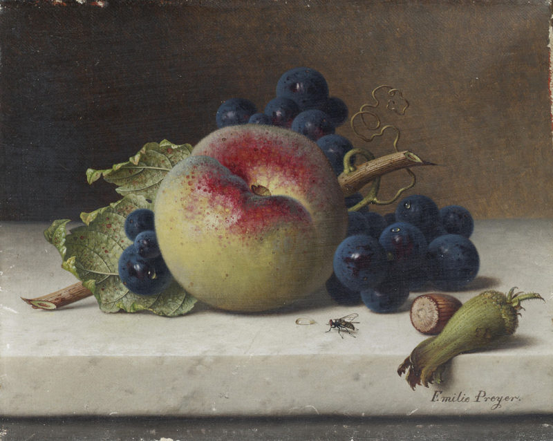Still Life of Fruit and Nuts on a Ledge | Emilie Preyer | oil painting