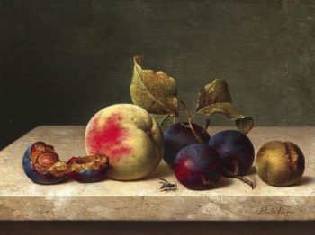 Still Life with Plums Apricots and a Wasp | Emilie Preyer | oil painting