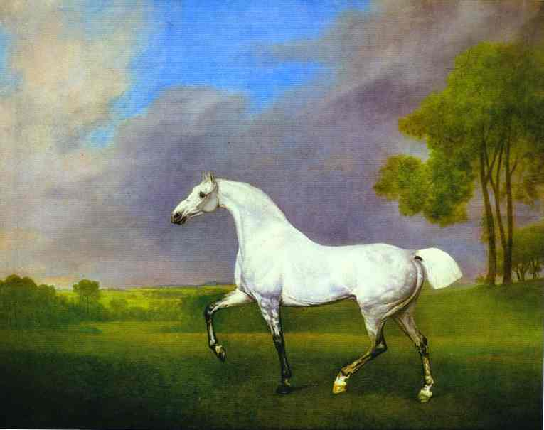 A Grey Horse | George Stubbs | oil painting