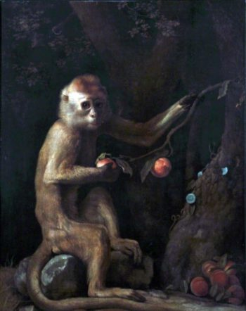 A Monkey | George Stubbs | oil painting