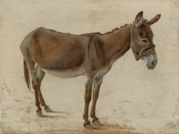 A Donkey   Jacques Laurent Agasse   oil painting