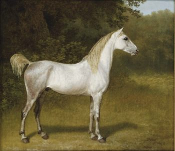 An Arab stallion in a landscape | Jacques Laurent Agasse | oil painting