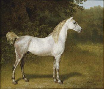 An Arab stallion in a landscape | Jacques Laurent Agasse | oil painting