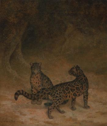 Clouded Leopards   Jacques Laurent Agasse   oil painting