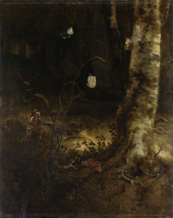 Woodland with a snake