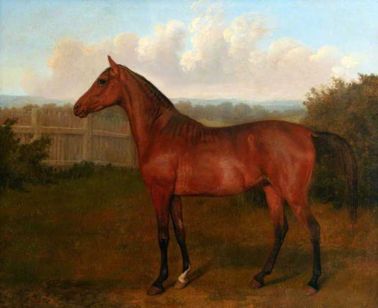 Colt of Mare and Arab Horse | Jacques Laurent Agasse | oil painting