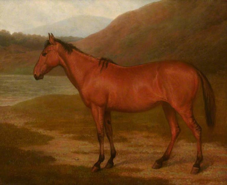 Foal of Mare and Quagga | Jacques Laurent Agasse | oil painting